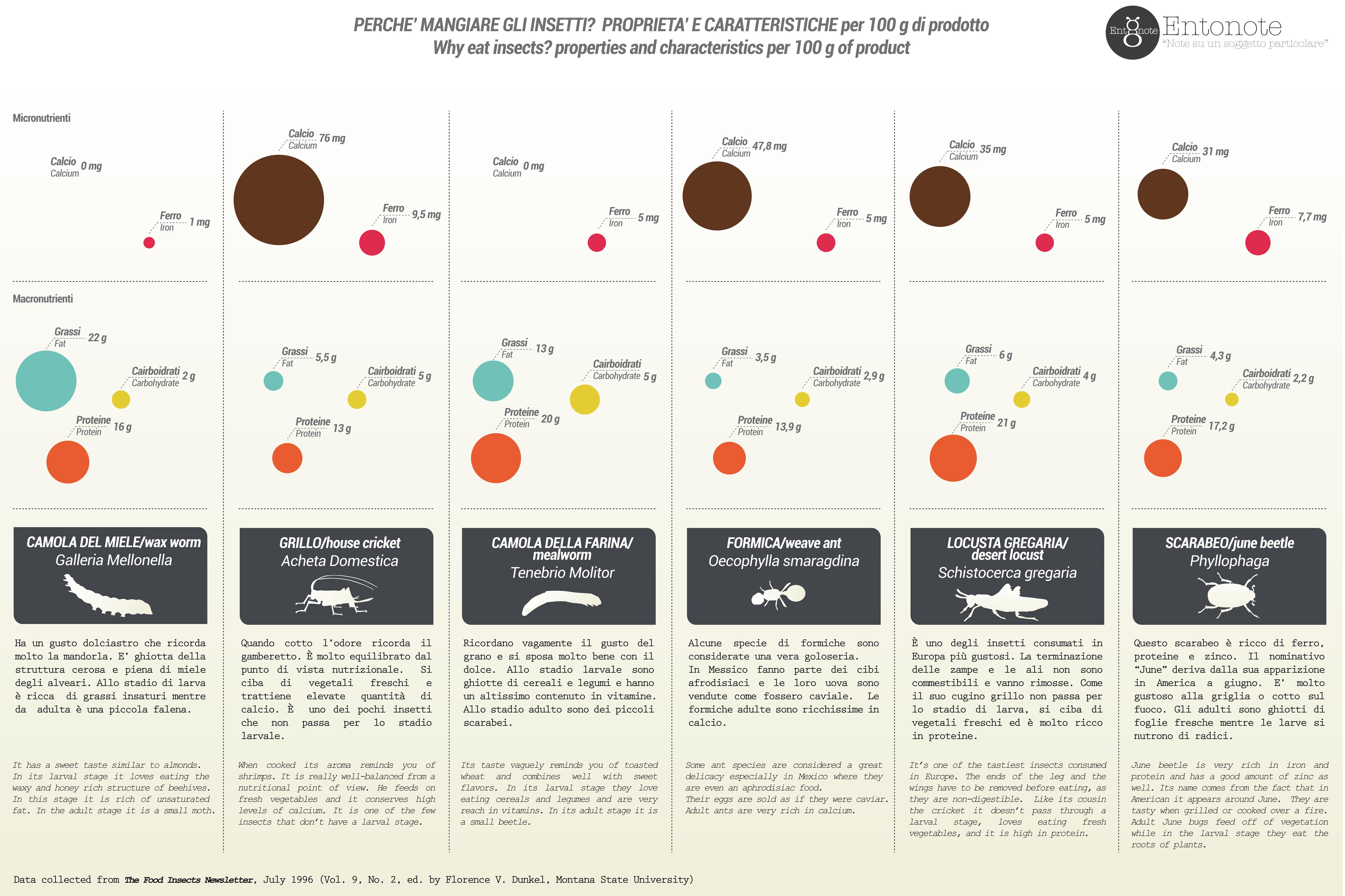 infografica valori nutrizionali entonote