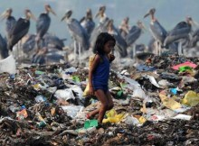 epa03213293 An Indian rag picker girl searches for material as a group of Greater Adjutant Stork seen in the background at a rubbish dump near Deepor Beel Wildlife Sanctuary on the outskirts of Guwahati city, India, 10 May 2012. Fast vanishing wetlands in and around Guwahati city have now become a major threat for the survival of this species of bird. Guwahati city has the largest concentration of the Greater Adjutant Stork in the world but their numbers are gradually declining due to the loss of wetlands, habitat and declining availability of food.  EPA/STR