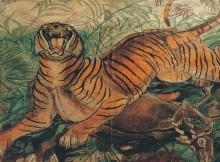 10-Tigre-reale-1000x600