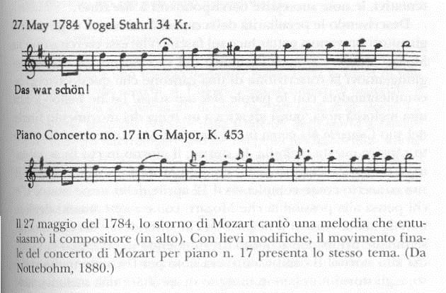 Il partito di Mozart e del suo storno