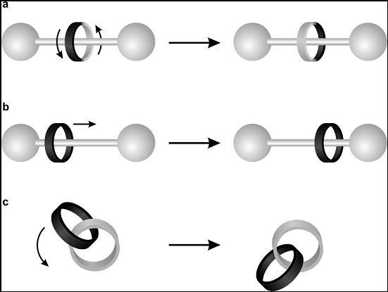 Figura 3. Esempi di movimenti che possono essere ottenuti in rotassani (a e b) e catenani (c).