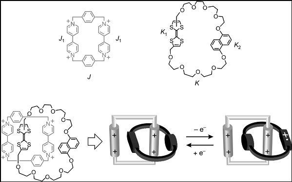 Figura 7. Un catenano in cui è possibile, mediante uno stimolo elettrochimico, far ruotare un anello rispetto all'altro.