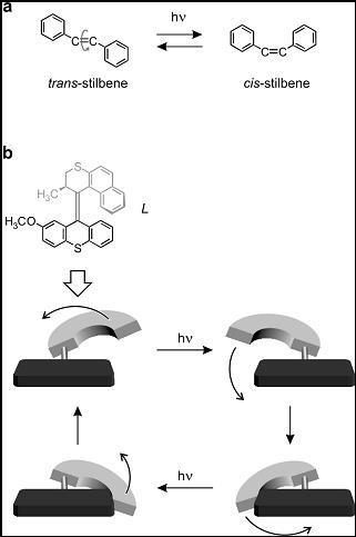 Figura 8. (a) Composti aventi un doppio legame C=C, che possono esistere in due forme isomeriche interconvertibili mediante l'eccitazione luminosa. (b) Composto opportunamente progettato per ottenere una rotazione completa in seguito a stimoli luminosi.