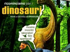 Cuccioli e uova di Dinosauri