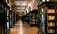 Alla scoperta del museo MUSA