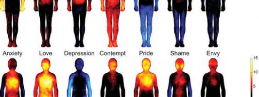 Analizzare la  voce per conoscere emozioni e patologie
