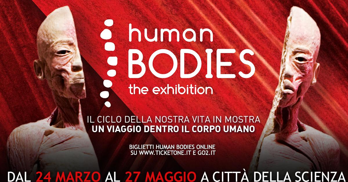 1200x628 HUMAN BODIES ciclo della vita_