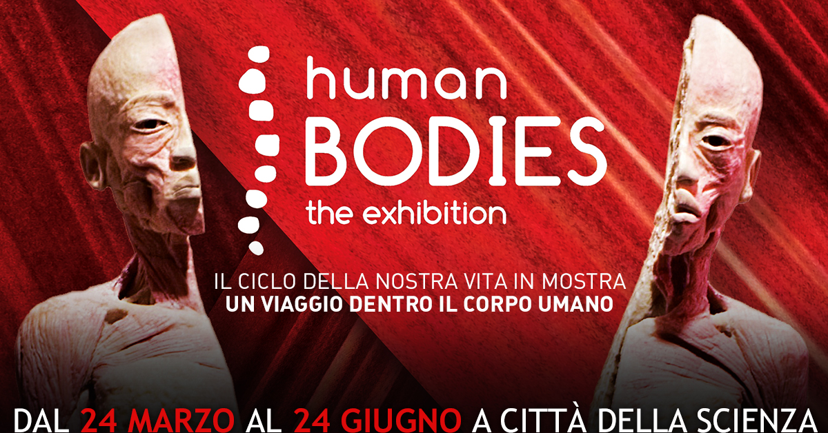 1200x628 HUMAN BODIES_The Exhibition