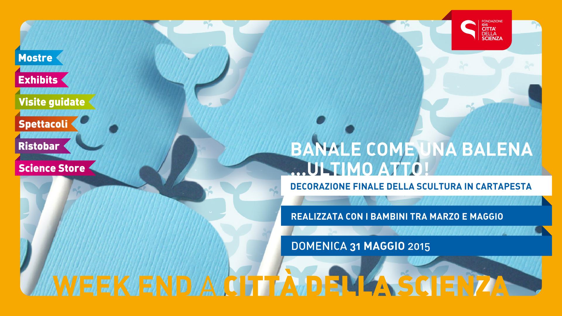 BANALE_BALENA1920x1080