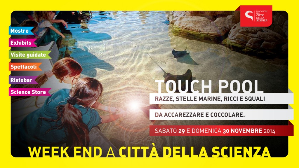 touchpool