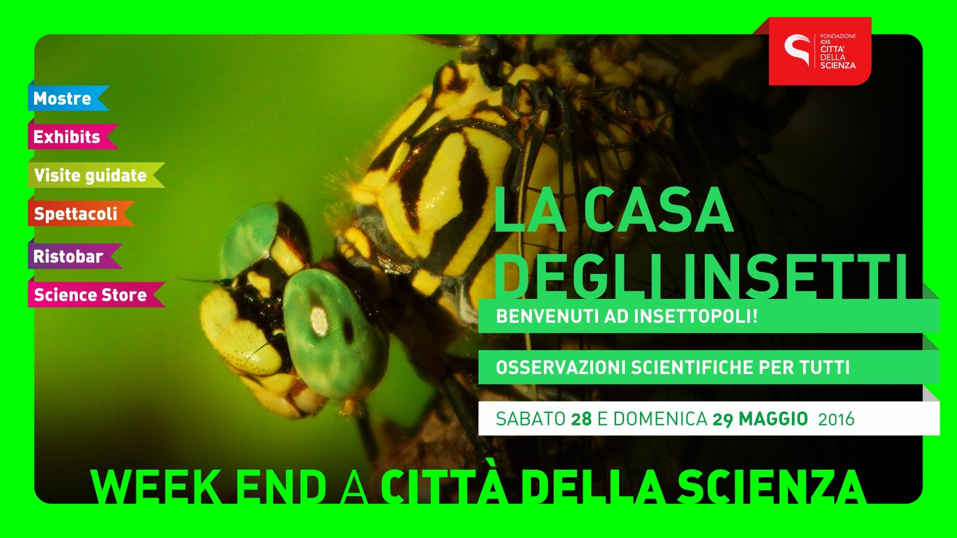CASA_DEGLI_INSETTI_1920_x_1080_px-min