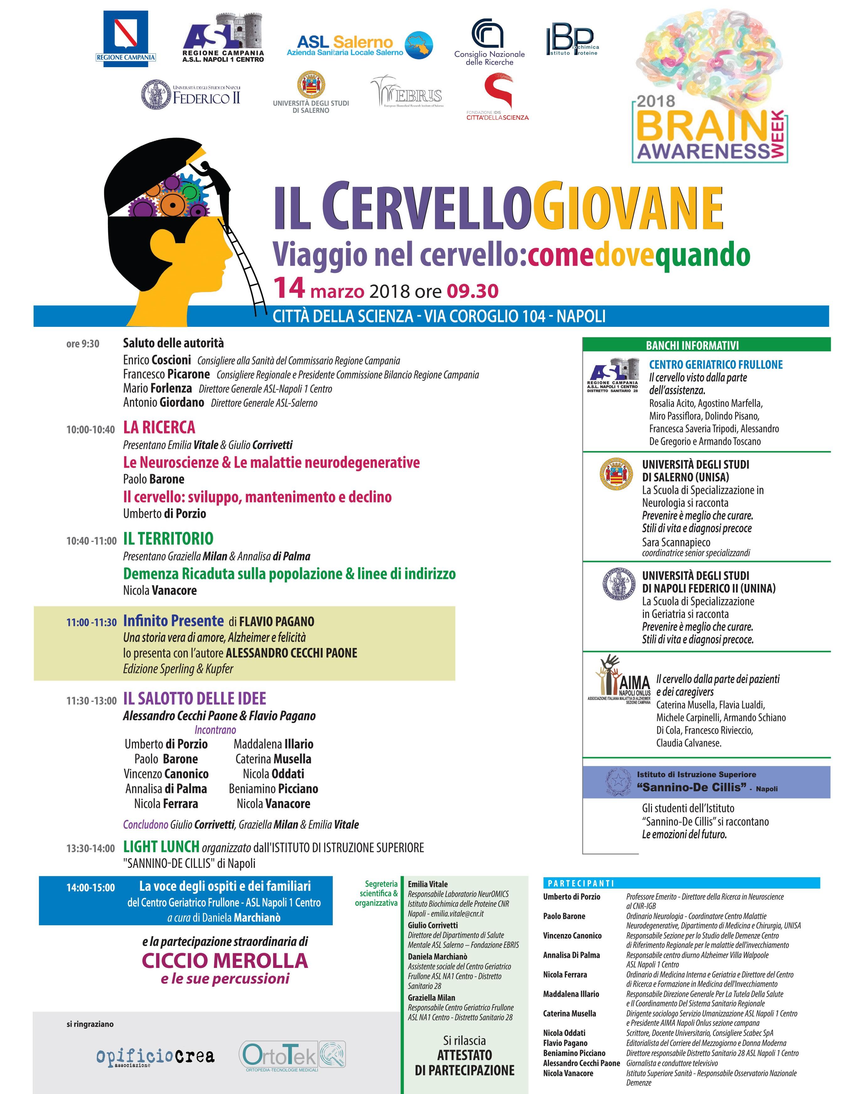 CERVELLO GIOVANE vol A4