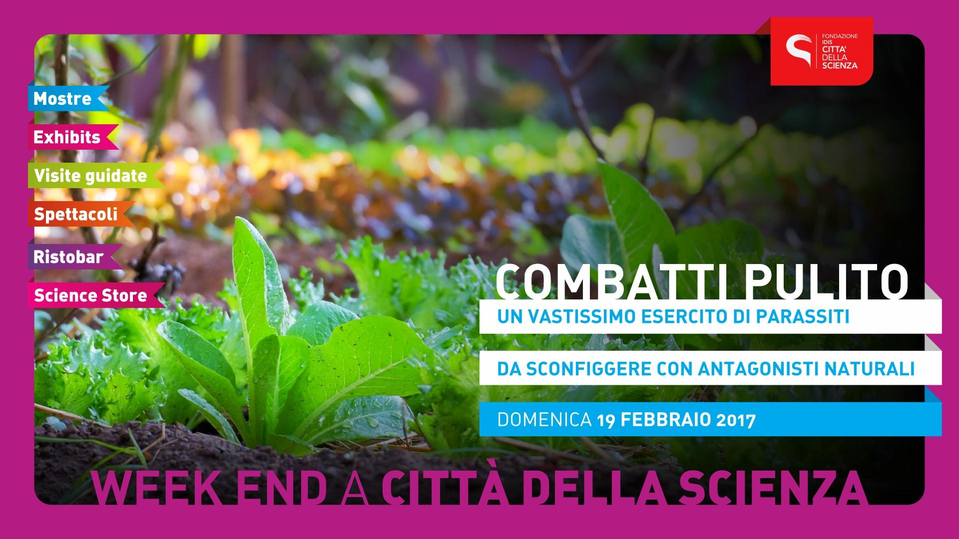 COMBATTI_PULITO_1920_x_1080-min