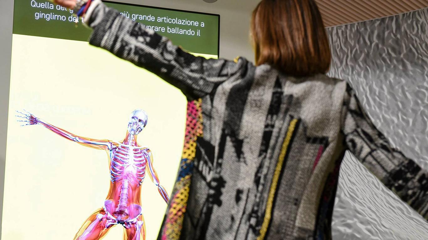 Corporea apparato muscolo scheletrico