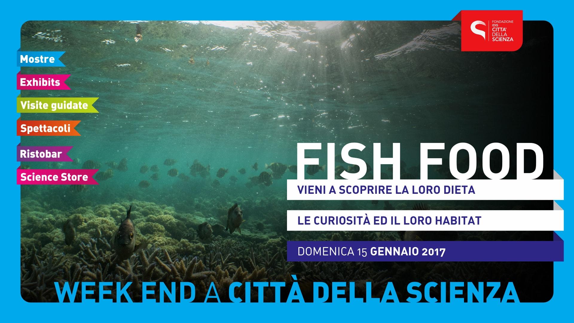 FISH_FOOD_1920_x_1080-min