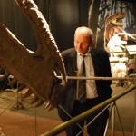 Feuerbacher e il dinosauro