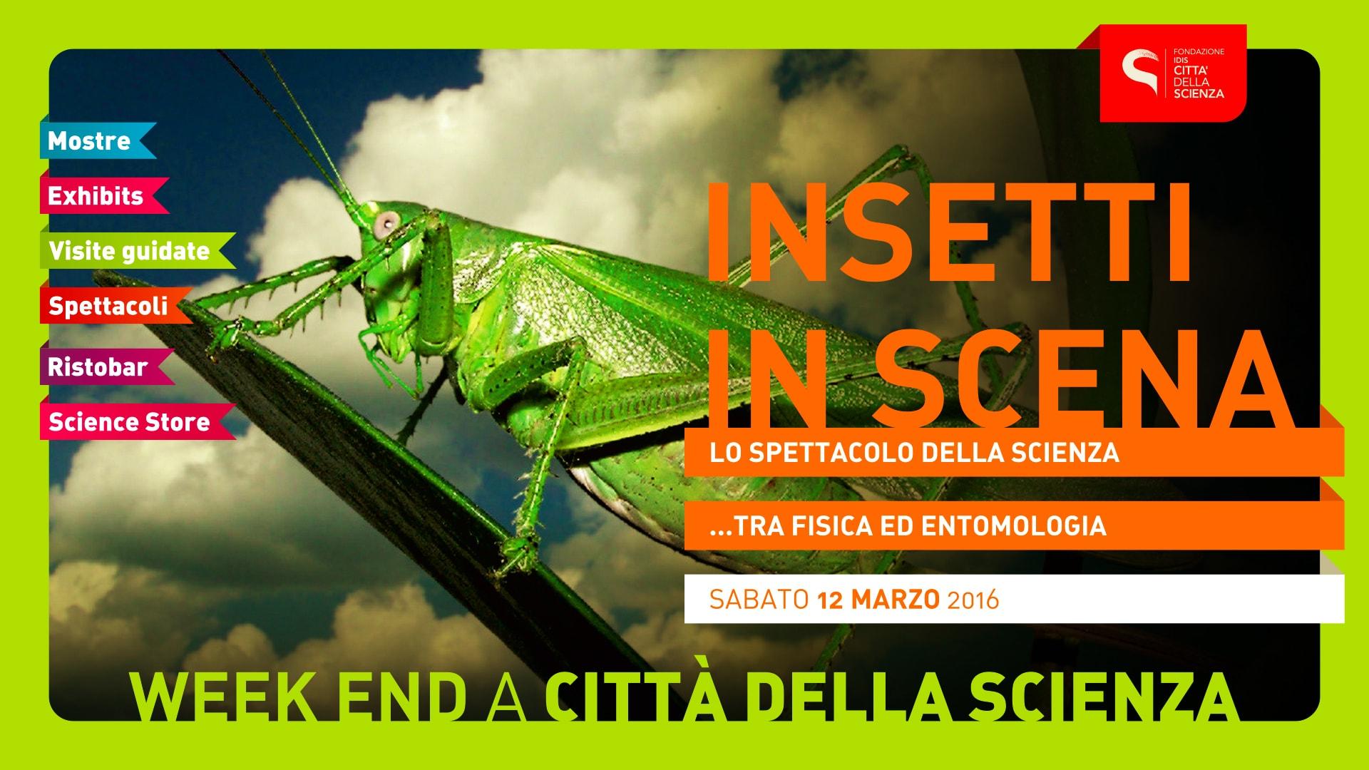 INSETTI_IN_SCENA_1920_x_1080-min