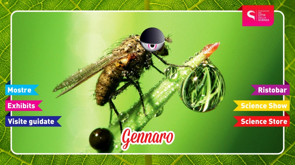 INSETTOPOLI_SHOW_Gennaro