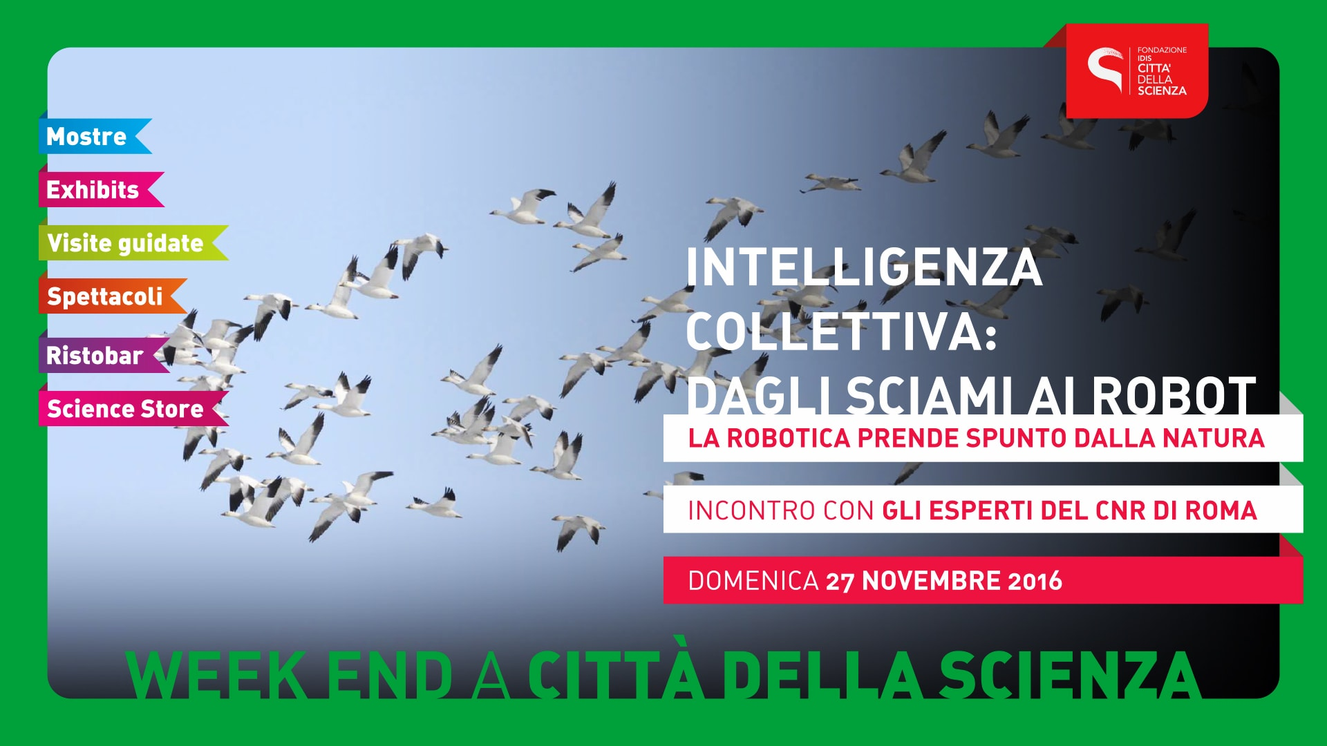 INTELLIGENZA_COLLETTIVA