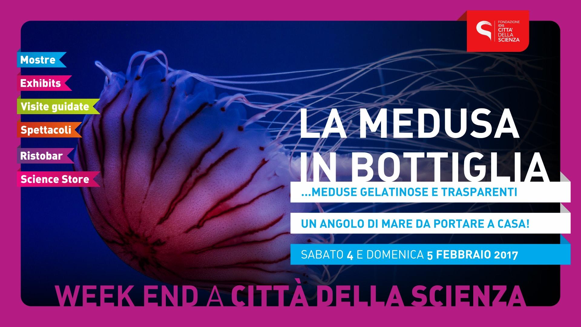 LA_MEDUSA_IN_BOTTIGLIA_1920_x_1080-min