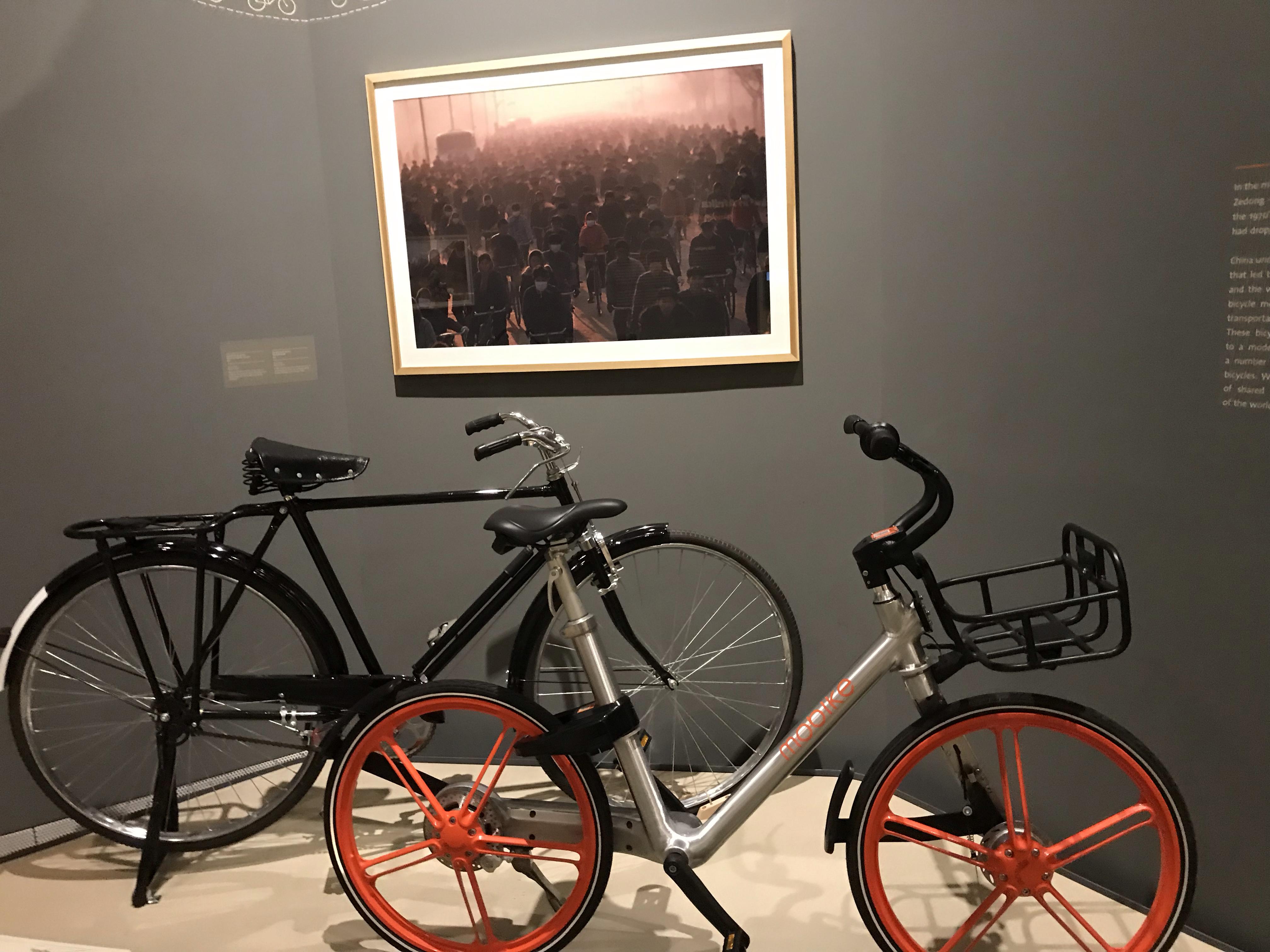 bike_it (11)