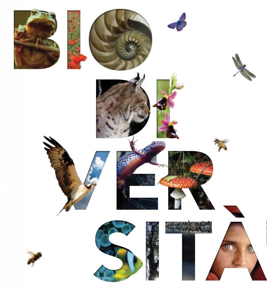 copertina_biodiversità
