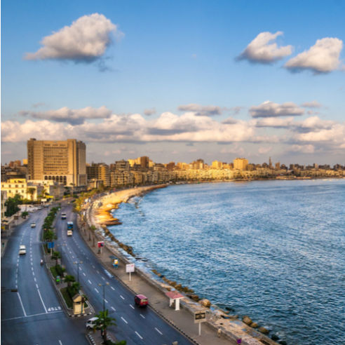icon-alexandria-egypt-492x492