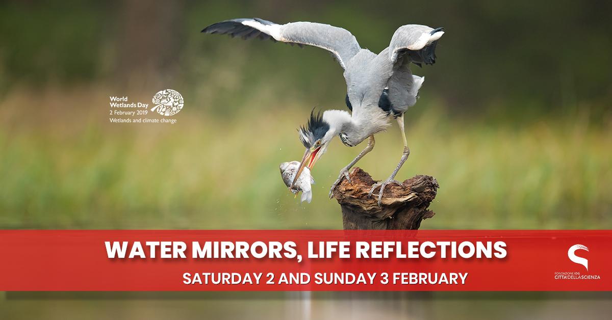 specchi d acqua_specchi di vita_ 2 e 3 febbraio 2019 a Città della Scienza_ENG
