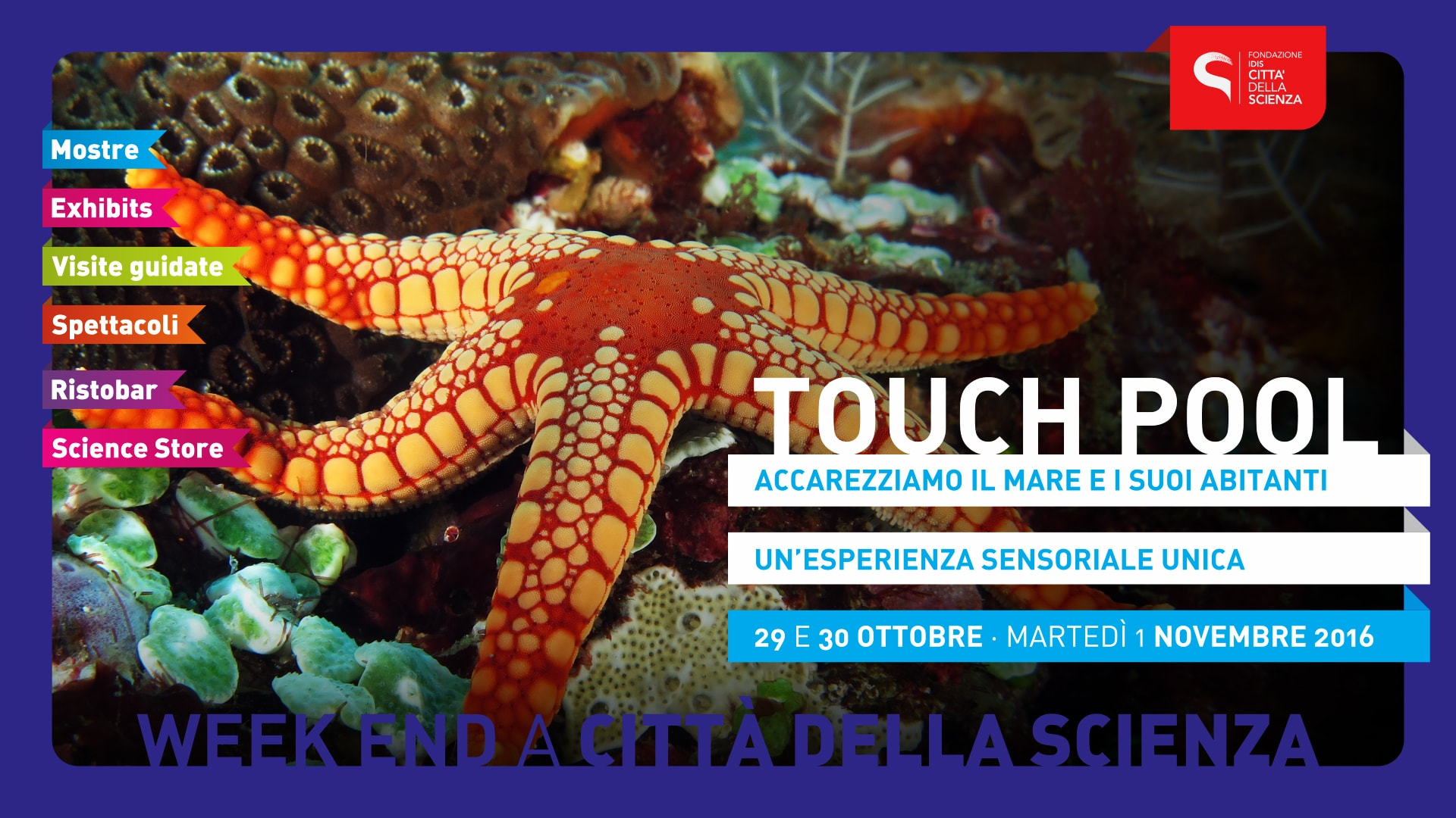 touch-pool-30-ottobre
