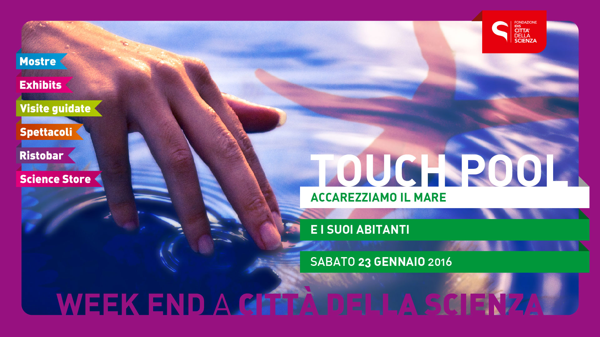 touch-pool